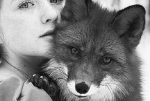 Spirit Animals & Totems
