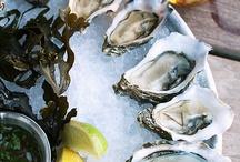 Oyster Varieties