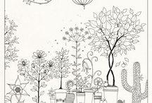 jardim segreto colorir
