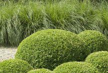 paul bangay gardens