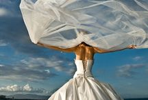Every Girl Loves Wedding Dresses / by Cathy Stevenson