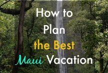 Things to do on Maui / Activities