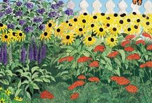 Butterfly Paradise Pre-Planned Cottage Garden
