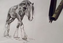 Equine Art / The beauty of horses.