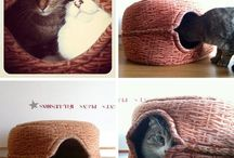 Kitties / by Tracie Crawford