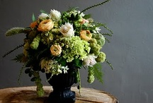 Flower lovelies / by Blooms & Co.