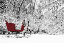 Winter / by Heidi Mireles
