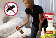Fabriclear - Bed Bugs / Want to get rid of bed bugs? Where do they come from? There are many products out there to help you with this problem and fabriclear bug spray is just one of them.