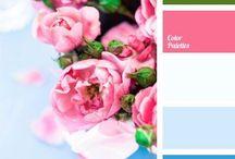 {colours} - 17. emerald, pink & aqua