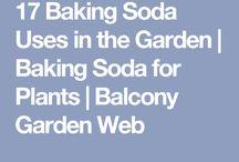 Σόδα και κηποσ