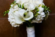 White-calla-lilies-flowers / by Tere Sandoval