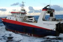 La marée / Avec notre flotte de pêche, nous sommes le 1er armateur de pêche fraîche en France !