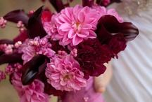 Pink & Burgundy Wedding