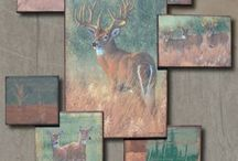 QDMA Shed: Miscellaneous / by QDMA