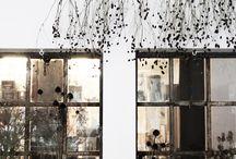 ❍ Plants º Drying