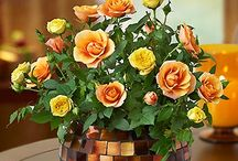 """Fall Ideas and Decor / Fall flowers and autumn gifts from 1800flowers are the perfect way to """"spice"""" up the season with oranges, reds and browns that resemble the gorgeous foliage."""