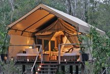 glamping magnifico