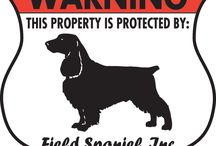 Field Spaniel Signs and Pictures / Warning and Caution Field Spaniel Dog Signs. https://www.signswithanattitude.com/field-spaniel-signs.html