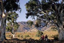 Outback SA