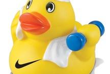 Ducks and DIY