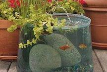 水のある庭                  Water Garden