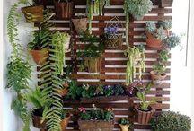 jardin adoro