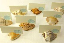 conchas de mar o caracoles