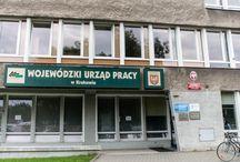 Wzgórza Krzesławickie (Dzielnica XVII)