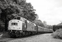 Featured Fridays