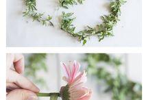 Fabulous Flowers & Foliage / Flowers, blooming plants, foliage