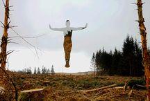"Rob Mulholland, ""Levitate – Forest felled"""