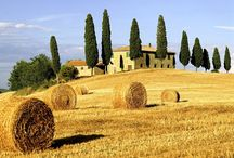 Tuscan / by Amy Bromley