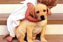 I love puppy's