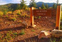 Park City Mountain Biking / Mountain Biking around Park City's 400+ miles of trails