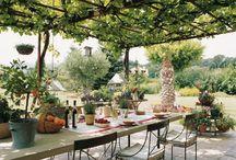 jardinet terrasse