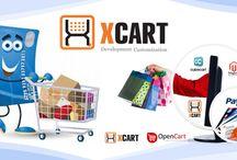 Ecommerce Payment Integration : http://goo.gl/mhFVqo