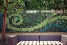 Vertical Gardens, Living Art! / by Amanda Ho