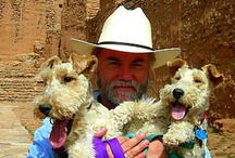 People and Pets of Southwestern College, Santa Fe / by Southwestern College Santa Fe