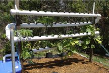 WATER GARDENING / Hydroponics, Aquaponics, Simple and Complex Systems / by Lynda