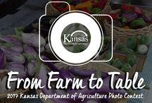 2017 From Farm to Table Photo Contest / Farming is a process, starting with planting seeds and ending with the food on our tables. Capture unique photos that show the process of the food supply in Kansas. 1 pin equals one vote.