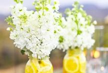 Kelli Wedding / Jars!