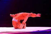 contortion / halylékonyság