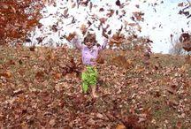 el otoño con vivaldi