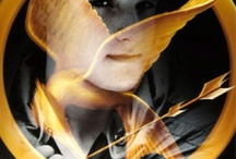 Hunger Games  Series :D