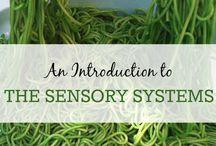 sensory fun