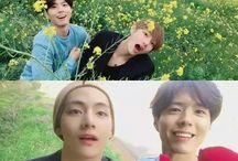 Park Bo gum & V