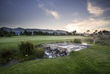 Golf Courses - Winelands