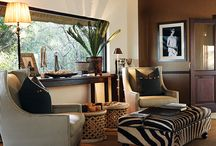 Ideal african living room
