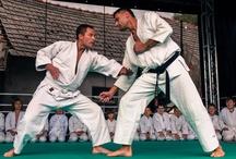Pokazy aikido / Aikido demonstrations