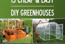 cheap n easy greenhouse